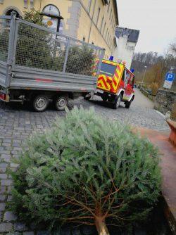 Einsammeln der Weihnachtsbäume